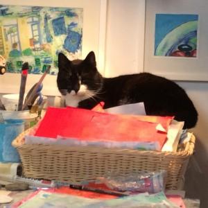greek. cat, art, studio