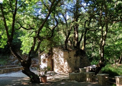 church trees roof miracle greece
