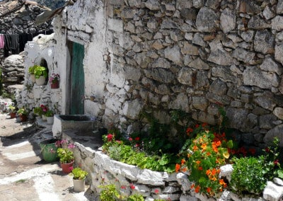 stone wall flowers greek village