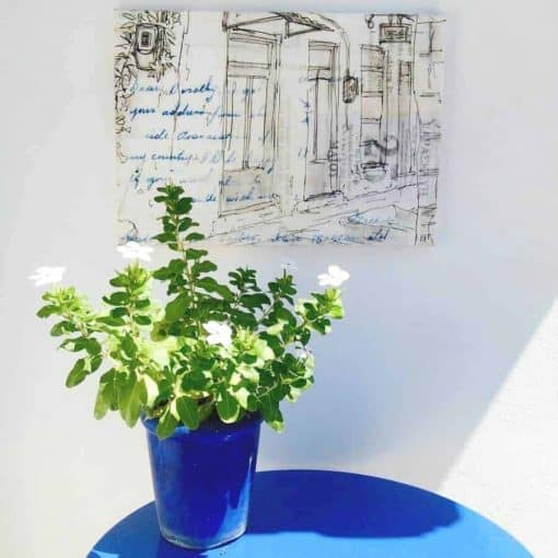 Greek bakery Koroni monochrome canvas print Gill Tomlinson Art